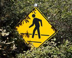 yellow road sign surrounded by bushes shows stick figure walking in a cross walk
